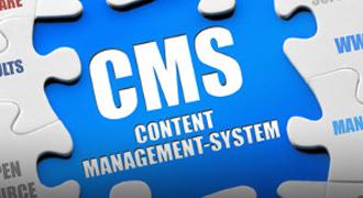 WordPress CMS Developers