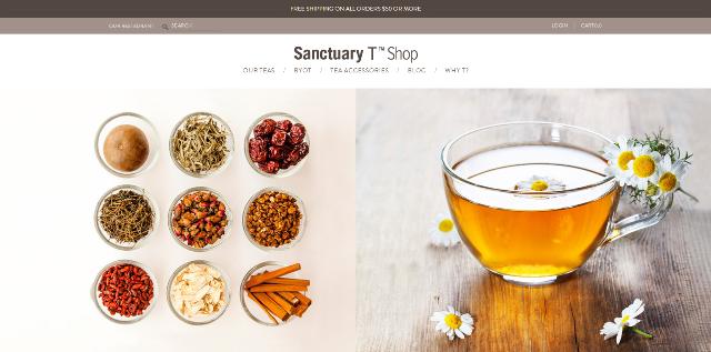 Sanctuary T Shop