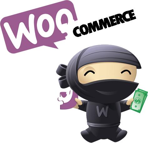 WooCommerce Custom development company India, Hire